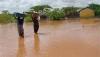 Heavy rainfall harming agriculture